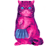 hypnocat the pink recycling cat with computer mice
