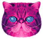 face of hypnocat the pink recycling cat