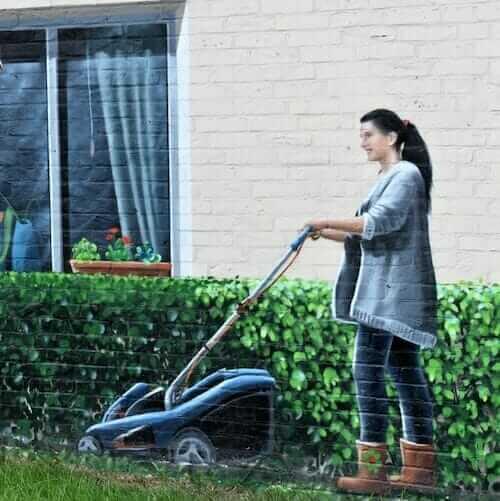 electric lawn mower mural